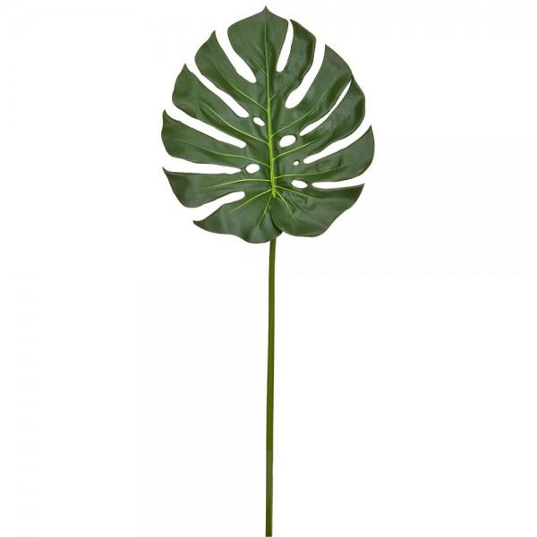 Split Philo Blatt B1, 75 cm