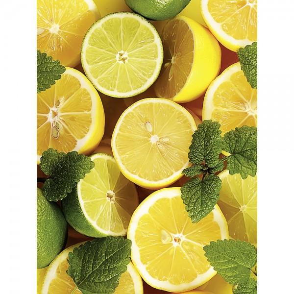 Banner XL Zitronen gelb/grün, B 150 x H 200 cm